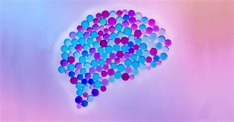 What Part of the Brain Controls Emotions? Fear, Happiness
