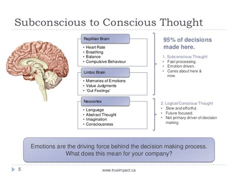 The Decision Making Process - Neuromarketing Overview