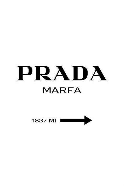 Poster prada in 2020 | Photo wall collage, Black and white