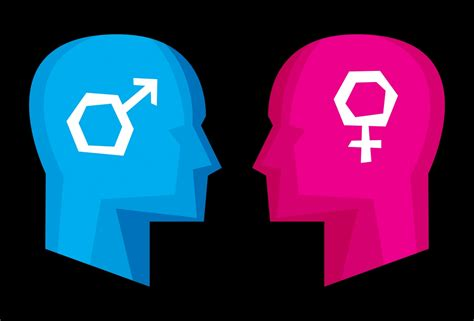 Sexism linked to 'dense grey matter' in the brain which